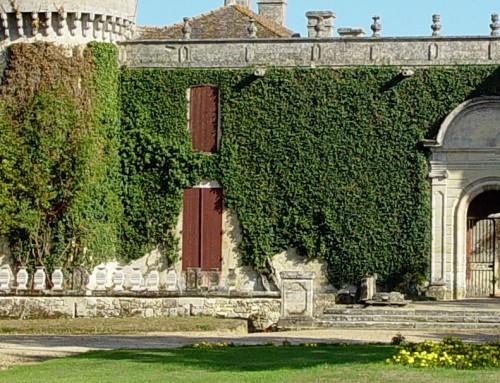 Château de M – Réhabilitation du site